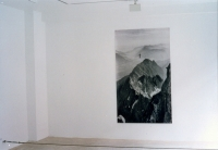c-print sticked on wall, 200 x 100 cm, no twist cable, variable dimension